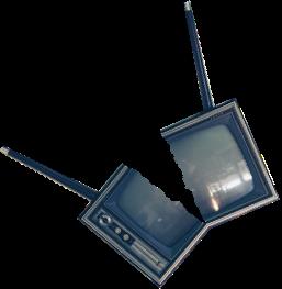 lille-frø-forside-tv