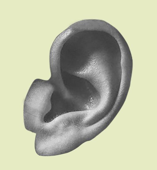 ear_BW-bg